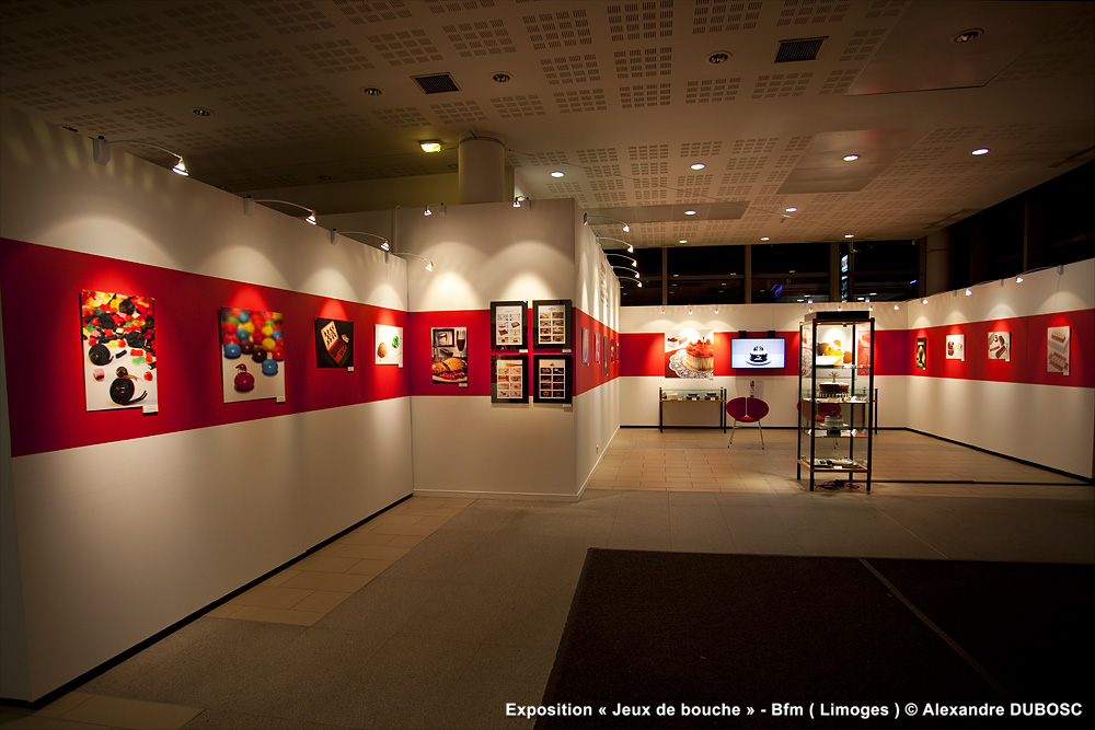 Exhibition : Limoges ( France )
